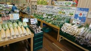 店内を入ると千葉直送の新鮮野菜が盛りだくさんです。